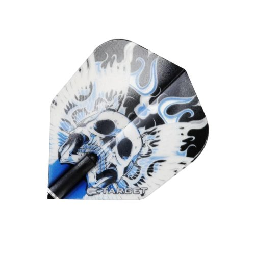 target-flight-vision-pro-blue-winged-skull